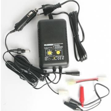 Charger - Discharger 1000mA 12-220 Volt